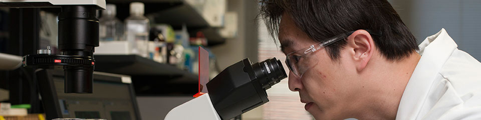 IUPUI biomedical engineering professor Chien-Chi Lin receives NSF Career Award